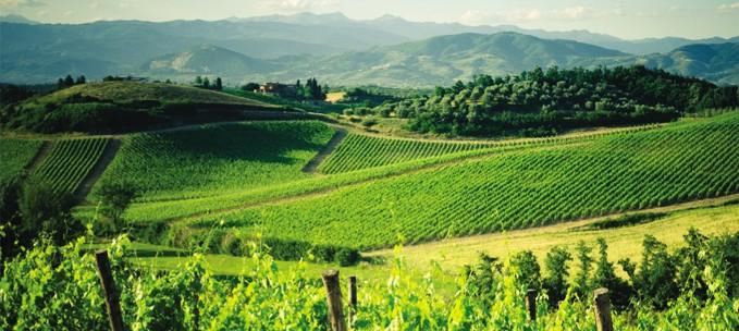 Italian Florence: Walking In Chianti & Tuscany