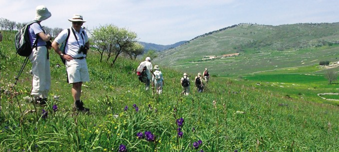 Flowers of the Gargano trip