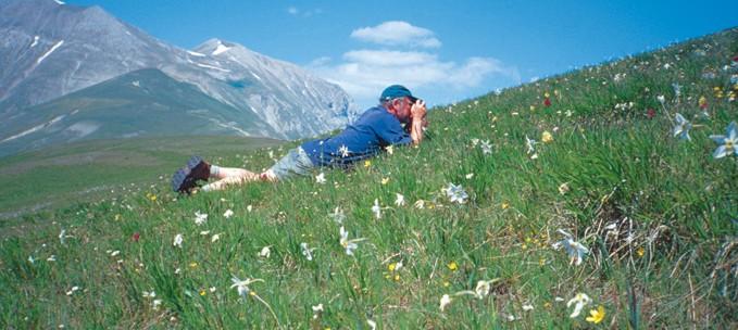 Flowers of Umbria trip
