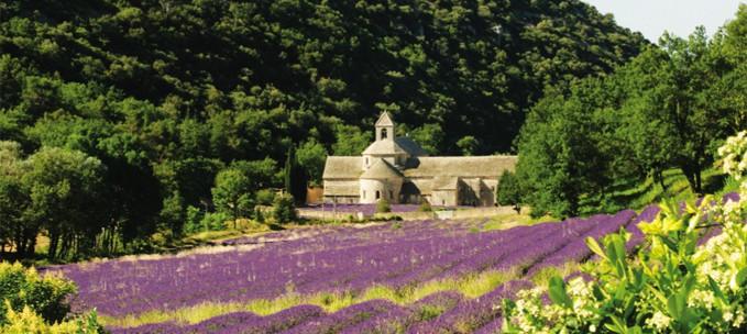 Provence: Vaucluse & the Luberon trip