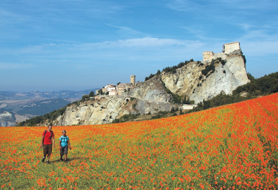 San Leo with poppies