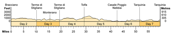 Topographical profile